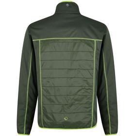 Regatta Walson Hybrid Kurtka Mężczyźni zielony
